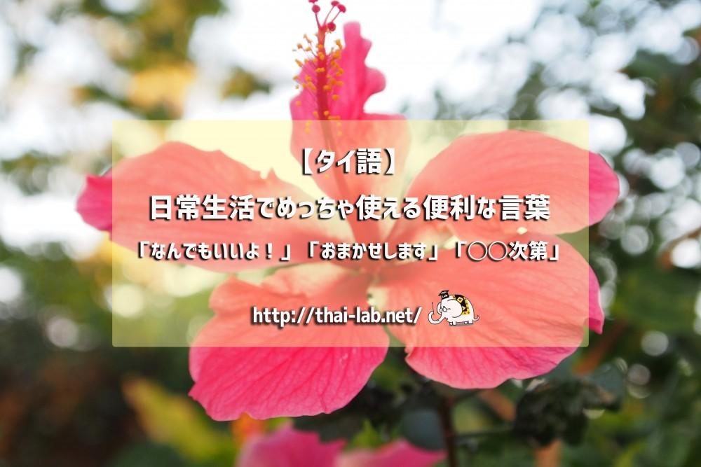 【タイ語】日常生活でめっちゃ使える便利な言葉「なんでもいいよ!」「おまかせします」「◯◯次第」