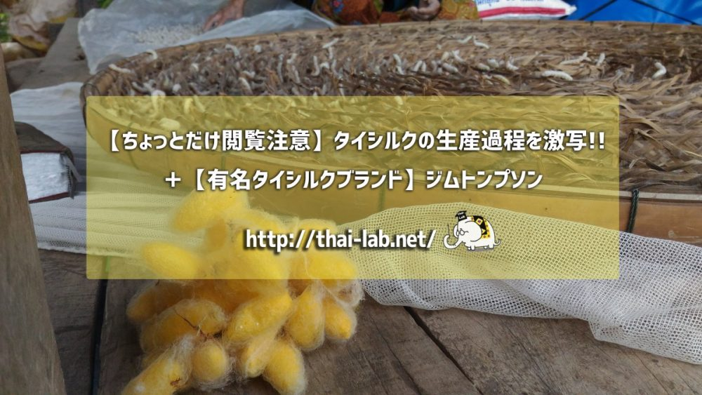 【ちょっとだけ閲覧注意】タイシルクの生産過程を激写!! +【有名タイシルクブランド】ジムトンプソン