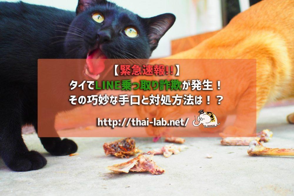 【緊急速報!!】タイでLINE乗っ取り詐欺が発生!その巧妙な手口と対処方法は!?