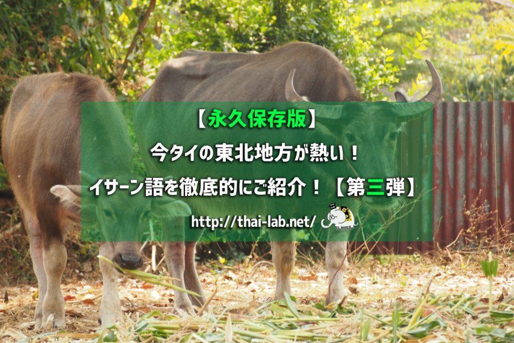 【永久保存版】今タイの東北地方が熱い! イサーン語を徹底的にご紹介!【第三弾】