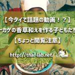 【今タイで話題の動画!?】トカゲの香草和えを作る子どもたち【ちょっと閲覧注意】