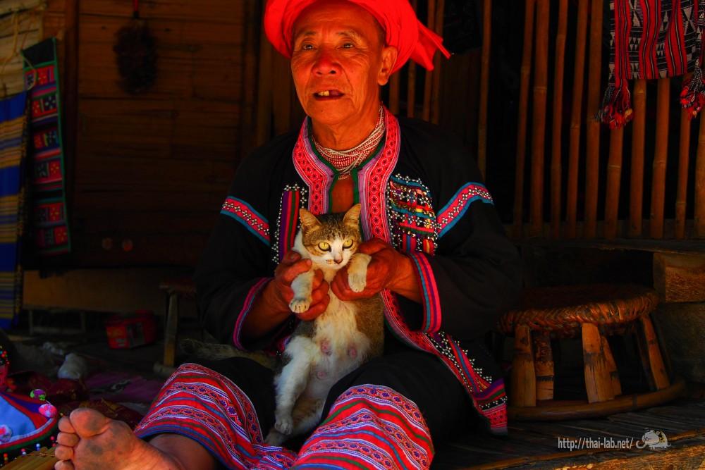 「バーントーンルアン」で見かけた猫たち【ネコラボ#18】
