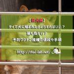 【狂犬病】タイで犬に噛まれたらどうすればいい?猫も危ない?予防ワクチン接種の値段や手順