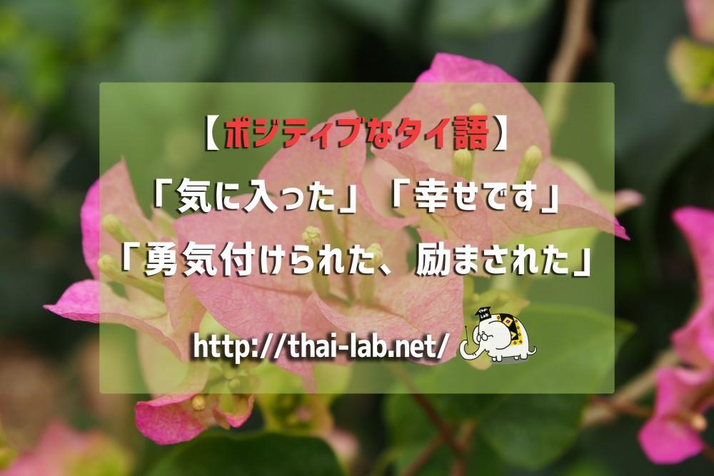 【ポジティブなタイ語】「気に入った」「幸せです」「勇気付けられた、励まされた」