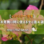 【心からの一言を】お見舞い時に使えるタイ語4選
