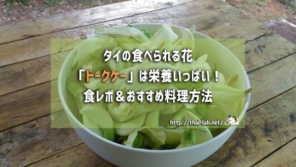 タイの食べられる花「ドークケー」は栄養いっぱい!食レポ&おすすめ料理方法