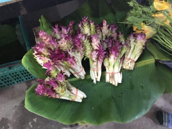 今が旬!タイの市場で見かけた「ウコンの花」が美味しかった