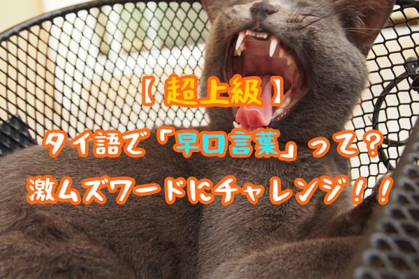 【超上級】タイ語で「早口言葉」って?6つの激ムズワードにチャレンジ!!